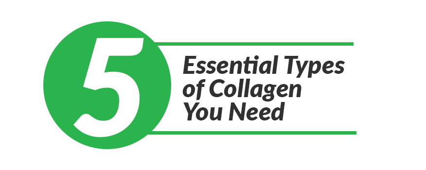 5 Essential Types of Collagen You Need