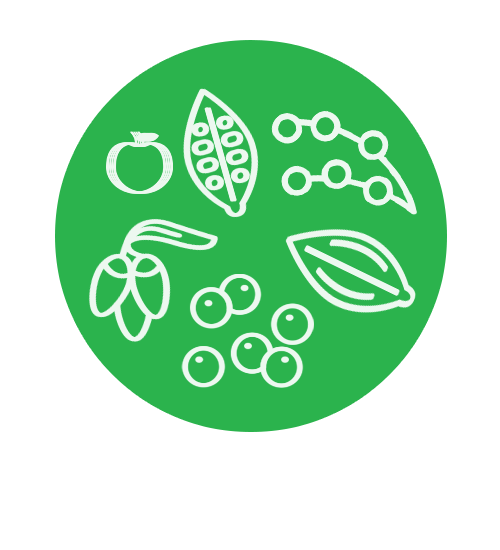 contains 40 superfoods