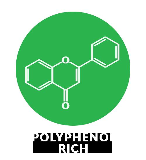 polyphenol rich
